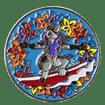 Summer Challenge Coin